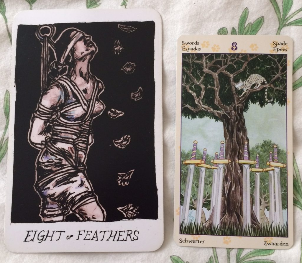 Eight of Feathers / Swords