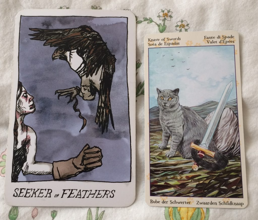 Seeker of Feathers / Knave of Swords